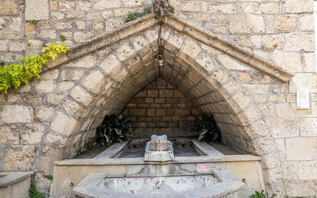 La Fontaine à la Grenouille : l'emblème du village