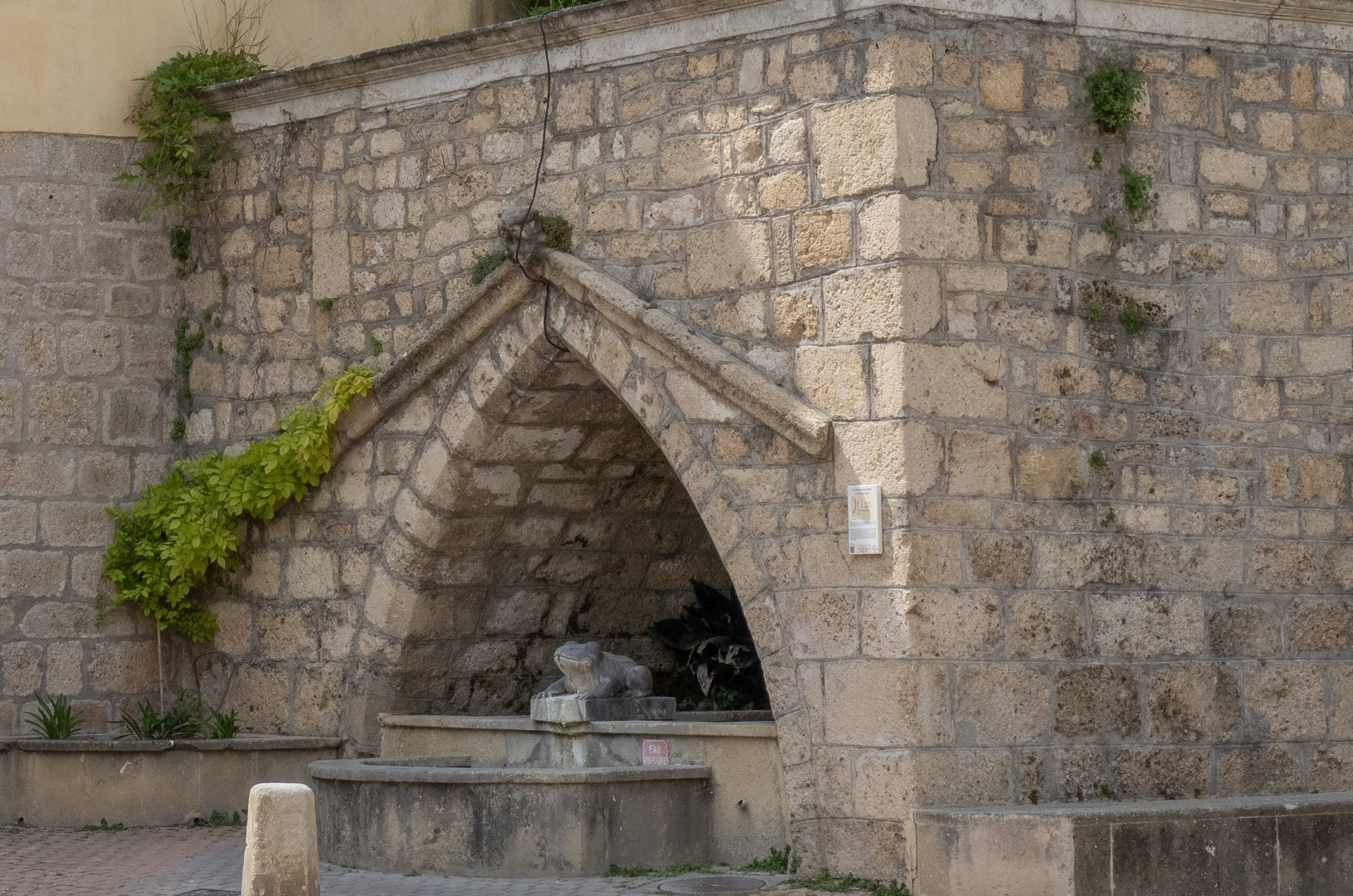 fontaine_grenouille_2